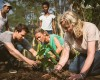 fathom passengers would be able to help the Dominican Republic by planting trees at a cacao nursery.