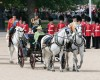 Trooping the Colour for the Queen.